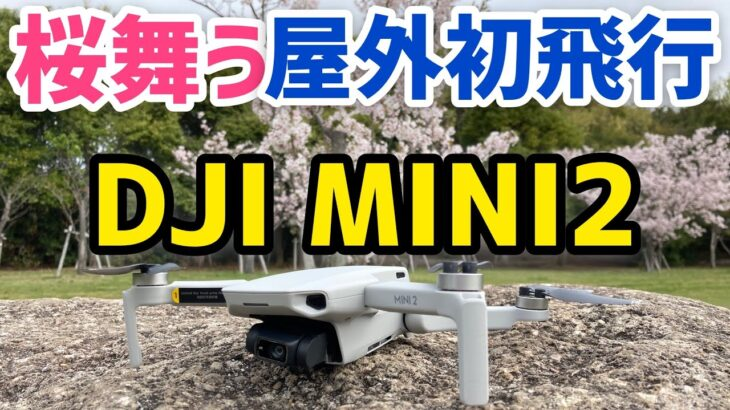 【ドローン撮影】桜満開の春の公園で初屋外飛行!お花見代わりにどうぞ!