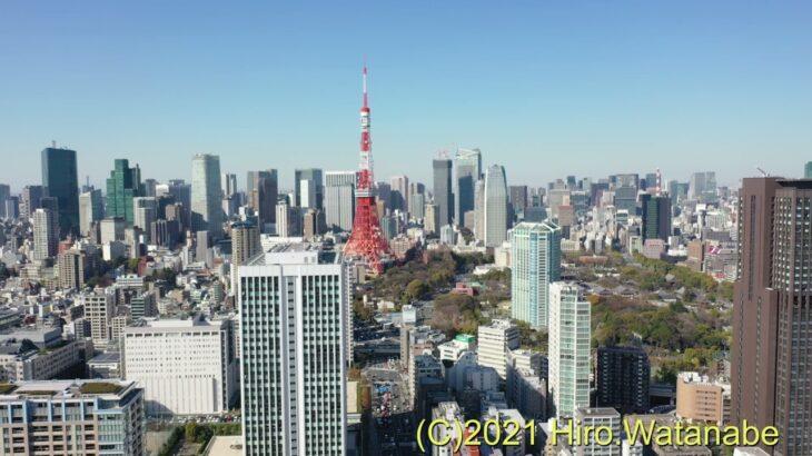 三田春日神社の桜と都心のビル群をドローンで空撮