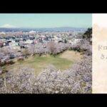 ドローン散歩~満開の春を楽しむ編~