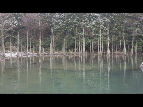 どき生百景VOL32一の俣桜公園(下関市)
