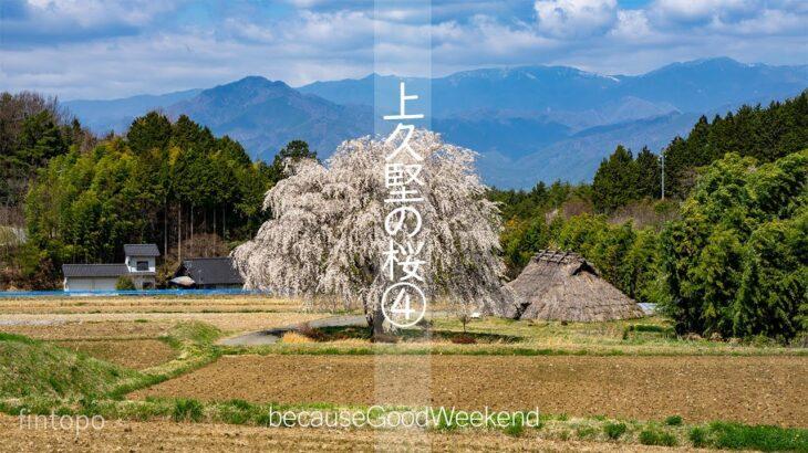 【小さな風景】上久堅の桜④ / 長野県飯田市